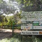 CDC - Guayabero